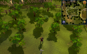 Compass clue Ardougne at Apple tree enclosure.png