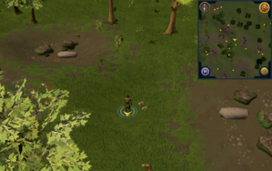 Scan clue Piscatoris Hunter area south-west of central Hunter training icon.png