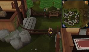 Scan clue Tirannwn north-east corner of Lletya.png
