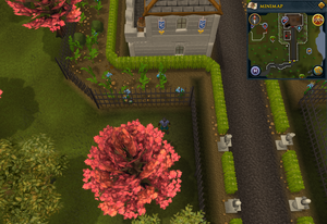 Compass clue Ardougne west of Legends' Guild entrance.png