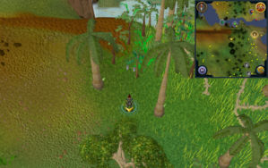 Scan clue Kharazi Jungle south of taskmaster in north-east corner of jungle.png