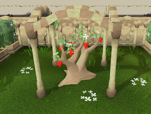 Sq'irk tree (Summer).png