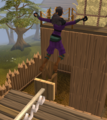 Agility2.png