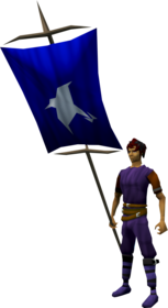Banner (Arrav) equipped.png: Banner (Arrav) equipped by a player
