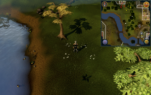 Compass clue Varrock east of southern mine.png