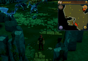 Emote clue Raspberry Dragontooth Isle.png