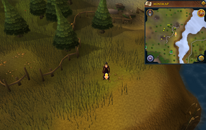 Scan clue Piscatoris Hunter area north-east of Eagles' Peak.png