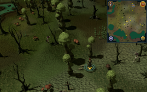 Scan clue Haunted Woods south of fairy ring.png