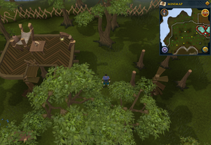 Compass clue Tree Gnome Stronghold north of the gnomeball field.png
