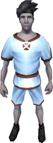 Gnomeballer's outfit (sky blue) equipped.png: Gnomeballer's tunic (sky blue) equipped by a player