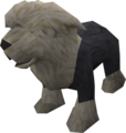 Sheepdog puppy (black) pet.png