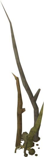 Tree Roots.png