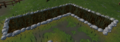 Allotment patch (weeds, Falador).png