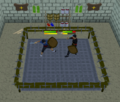 Combat Ring.png