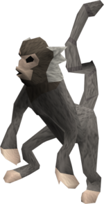 Baby monkey (grey and white) pet.png