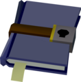Locked diary detail.png