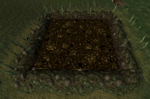Mushroom patch (clean).png