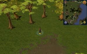 Scan clue Piscatoris Hunter area north-east of southeastern fencing.png