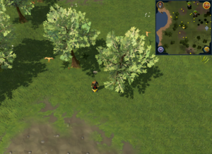 Scan clue Piscatoris Hunter area west of central Hunter training icon, close to trees.png