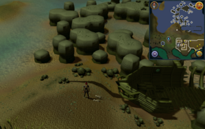 Compass clue Port Phasmatys north of farming patches.png