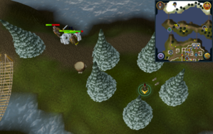 Scan clue Fremennik Isles inside ring of arctic pines on grassy island.png