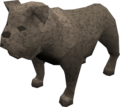 Bulldog (grey) pet.png
