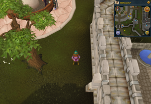 Scan clue Varrock south-east corner of the Grand Exchange.png