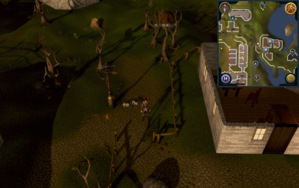 Compass clue Port Khazard west of General store.png