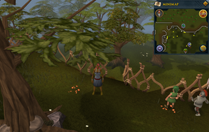 Compass clue Tree Gnome Stronghold south of the cobalt skillchompa hunter area.png