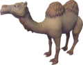 Al the Camel.png