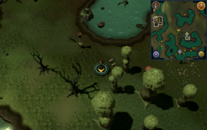 Scan clue Haunted Woods north-west of Werewolf Skullball entrance.png