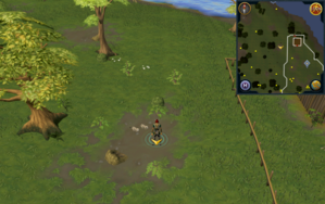 Scan clue Piscatoris Hunter area north-west of Falconer.png