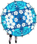 Maui parasol equipped.png