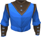 Wizard robe top detail.png