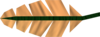 Orange feather detail.png