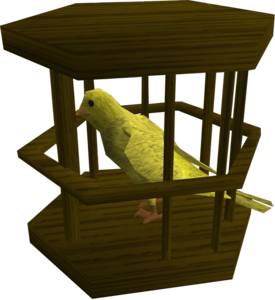 Canary.png