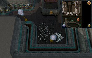 Scan clue Dorgesh-Kaan upper level south-east corner.png