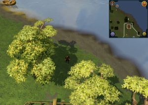 Scan clue Piscatoris Hunter area north of Falconer.png