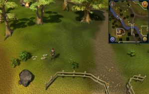 Compass clue Ardougne south-west of Fishing Guild 2.png