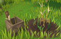 Herblore habitat tall grass.png