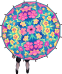 Kauai parasol equipped.png
