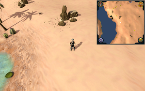 Scan clue Kharidian Desert south of fairy ring.png