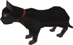 Overgrown cat (black) pet.png