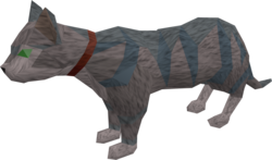 Pet cat (white and blue) pet.png