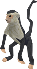 Monkey (black and white) pet.png