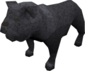 Bulldog (black) pet.png