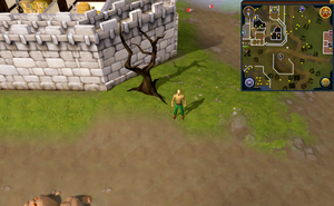 Map clue location Varrock east mine.png