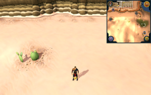 Scan clue Kharidian Desert south-west of north-eastern mine.png