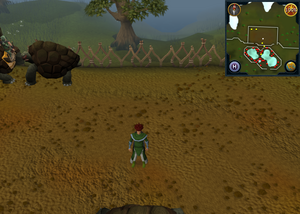 Compass clue Tree Gnome Stronghold in centre of tortoise pen.png