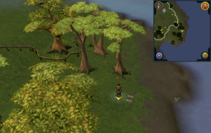 Scan clue Piscatoris Hunter area south-east of Falconer.png